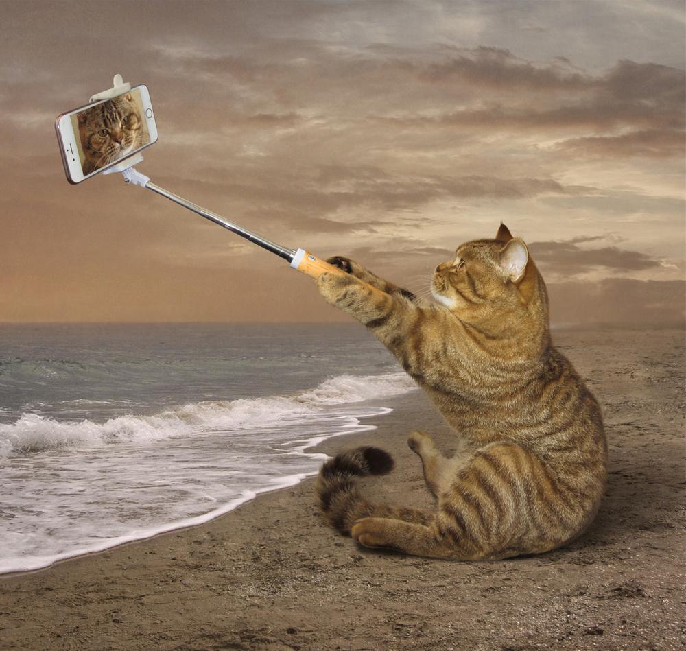 A piece of fine art art photography titled Selfies On the Beach by Iryna Kuznetsova (Iridi)