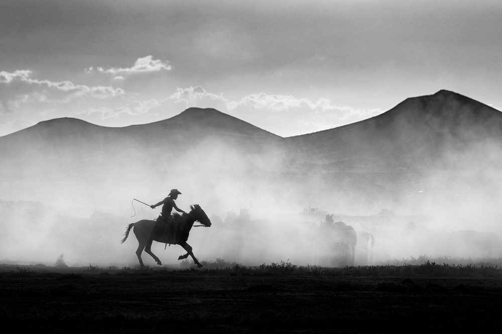 View this piece of fine art photography titled Horse Shepherd by Murat İbranoğlu