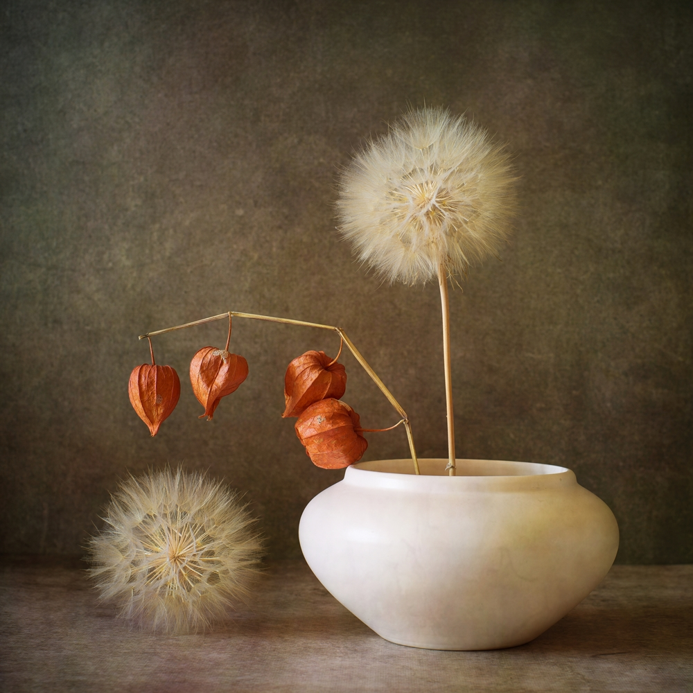 View this piece of fine art photography titled still life with a dandelion by Iwona Nabzdyk