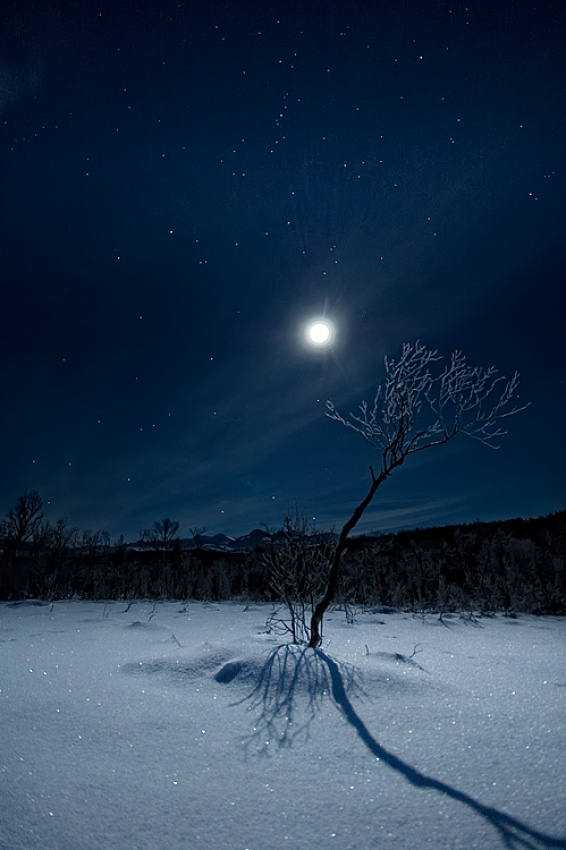 A piece of fine art art photography titled Full Moon Fever by Arild Heitmann
