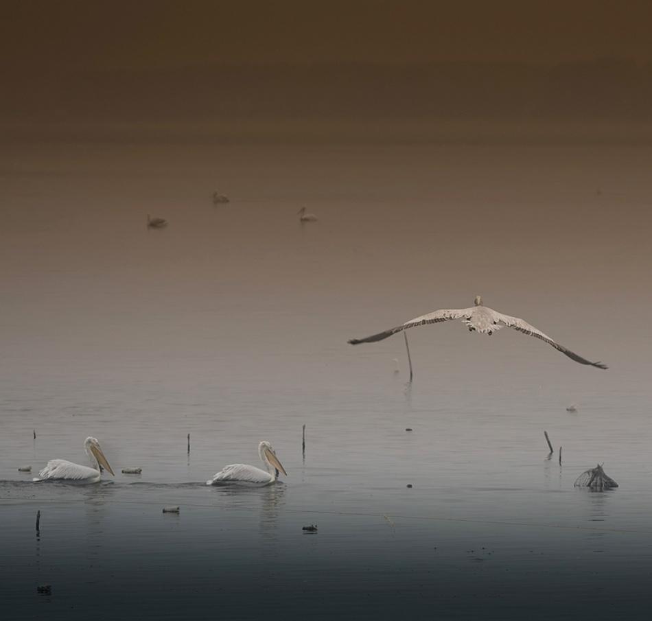 A piece of fine art art photography titled Untitled by Alexander Maslarski