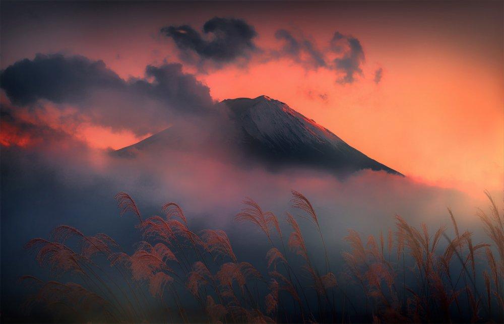 Fuji. Japan.,富士。 日本