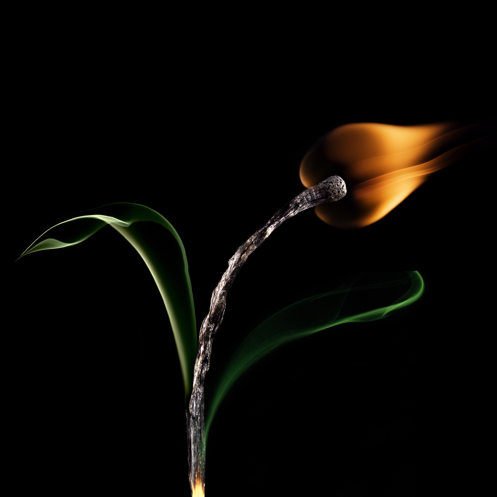 A piece of fine art art photography titled The Tulip by Stanislav Aristov