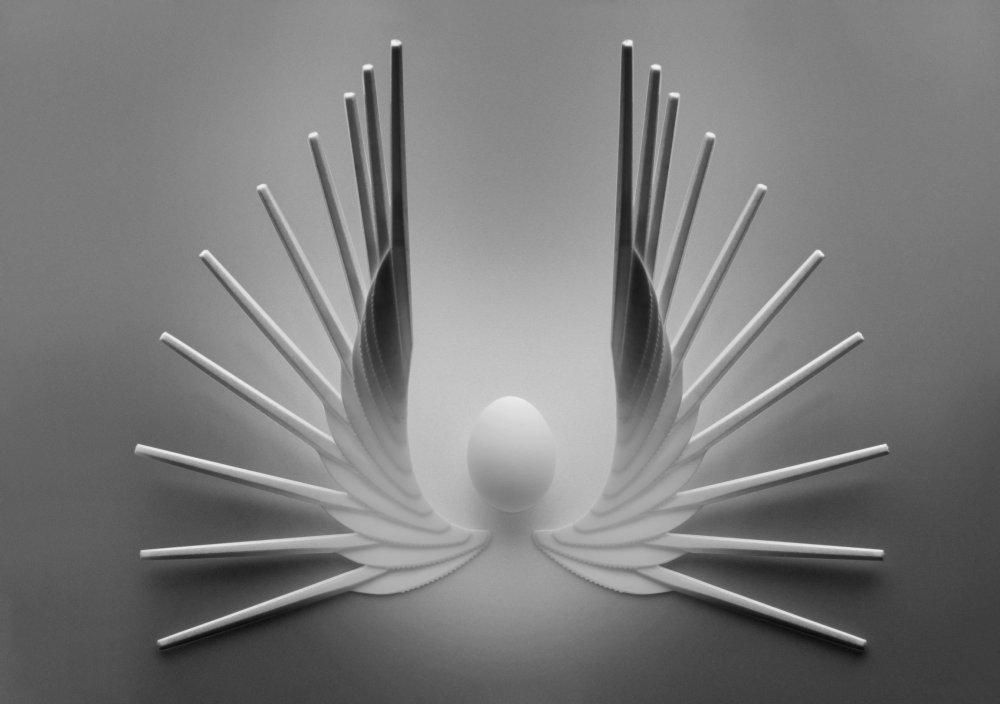 A piece of fine art art photography titled Eggguardian 2 by Rene Kühl