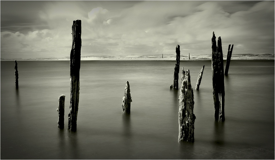 A piece of fine art art photography titled Last Nine Standing by Andrew Thatcher