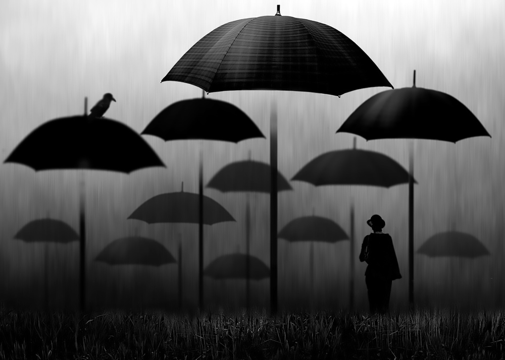 A piece of fine art art photography titled Rain Forest by Ben Goossens