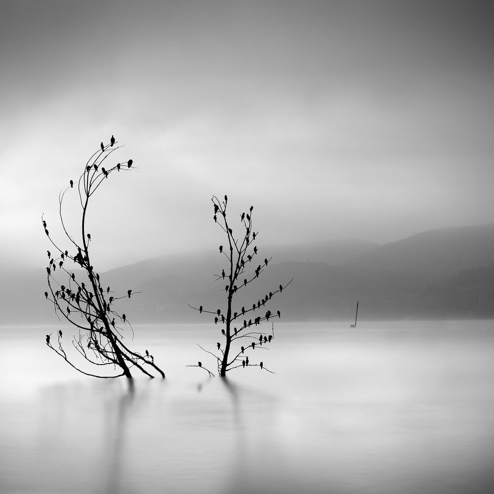 A piece of fine art art photography titled Ode to Joy by George Digalakis