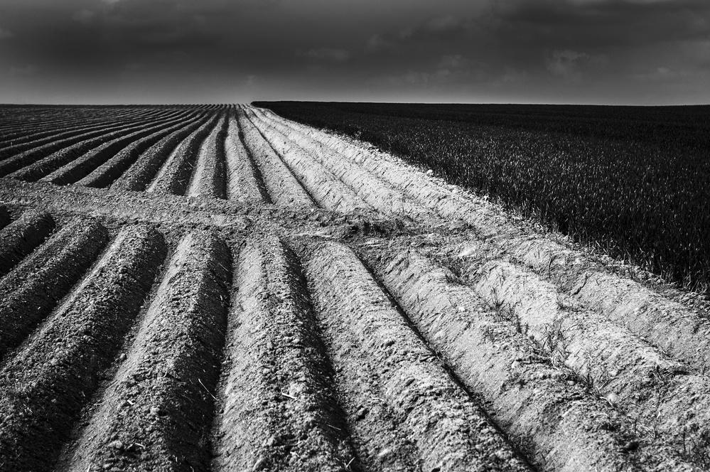 A piece of fine art art photography titled Flemish Landscape by Eddy Verloes