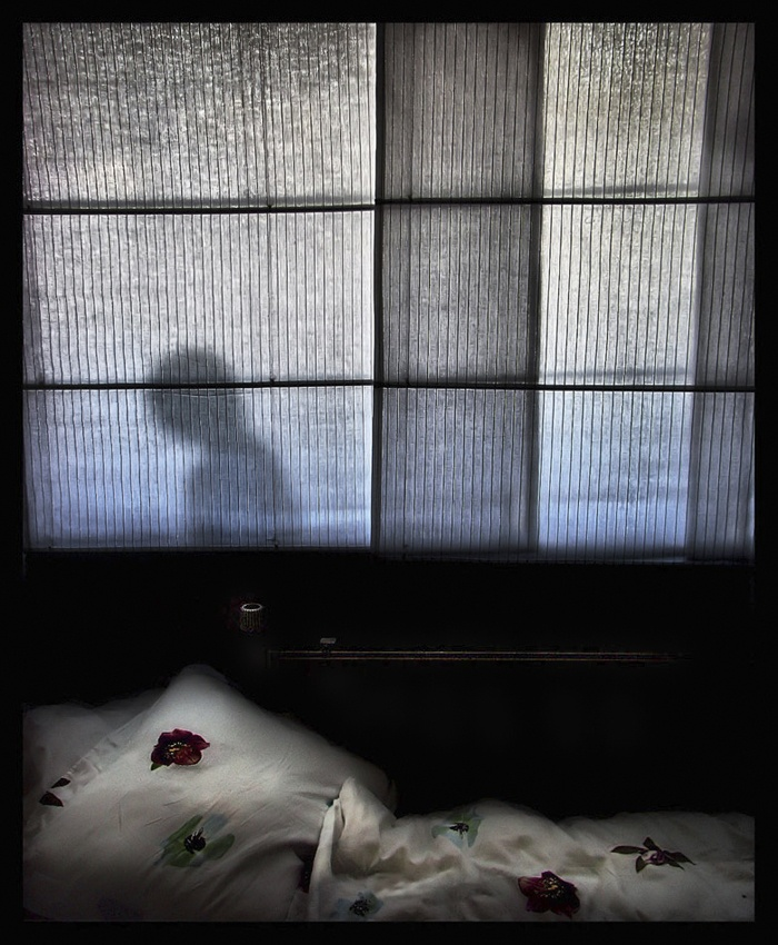 A piece of fine art art photography titled That Bloody Nightmare by Carine Hengst