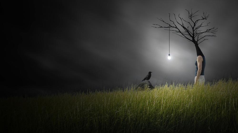 A piece of fine art art photography titled Conversation Lumineuse Avec Un Oiseau by David Senechal Photographie (polydactyle)