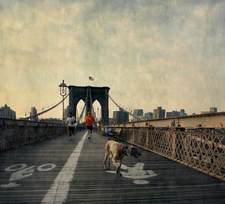 A piece of fine art art photography titled Urban Jogging by Fulvio Pellegrini