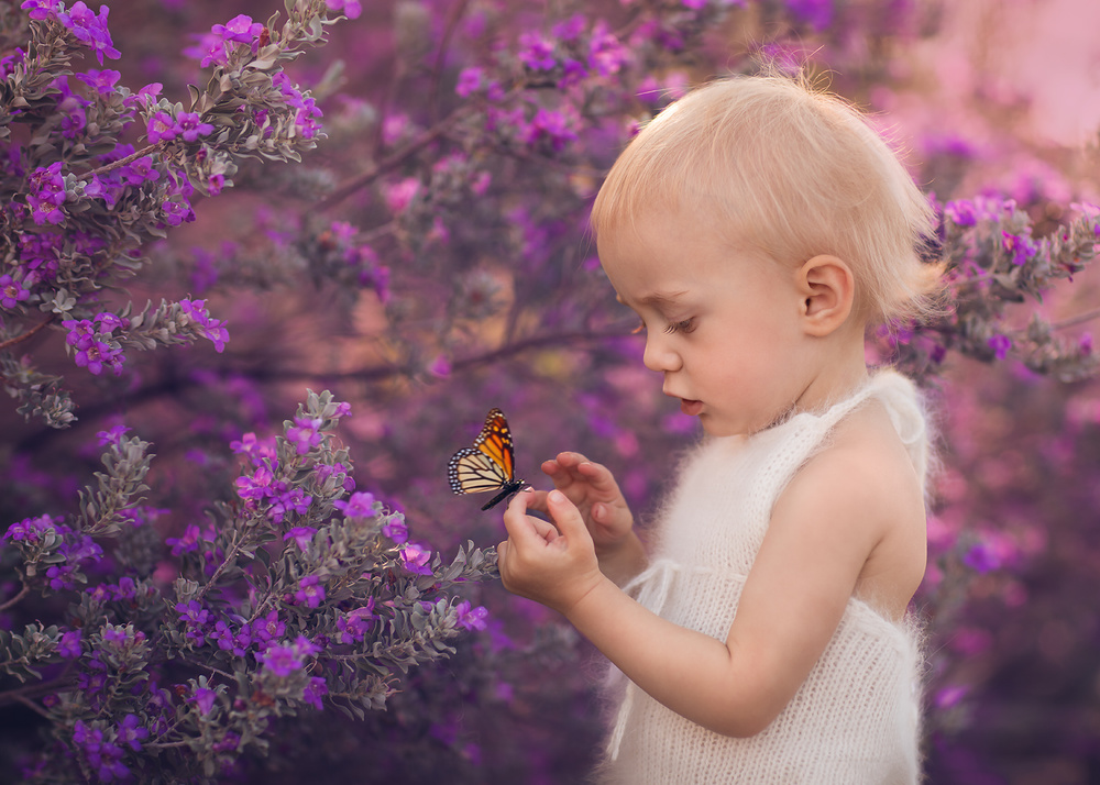 A piece of fine art art photography titled Tiny Friends by Lisa Holloway