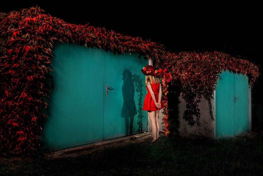 A piece of fine art art photography titled Parking Assistant by Miloš Nejezchleb