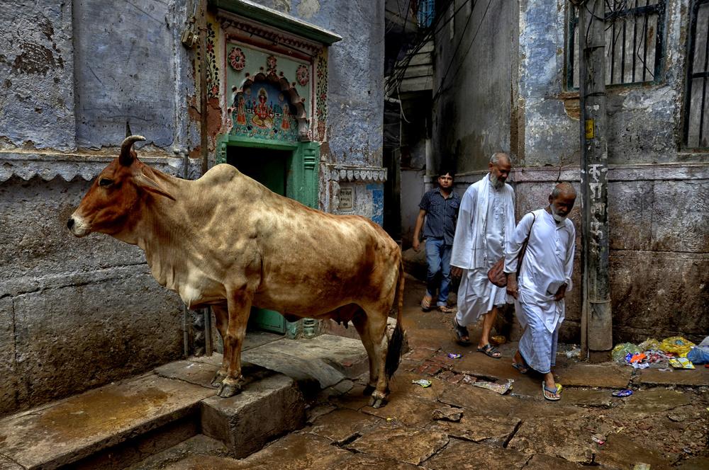 A piece of fine art art photography titled Street of Varanasi by Avishek Das