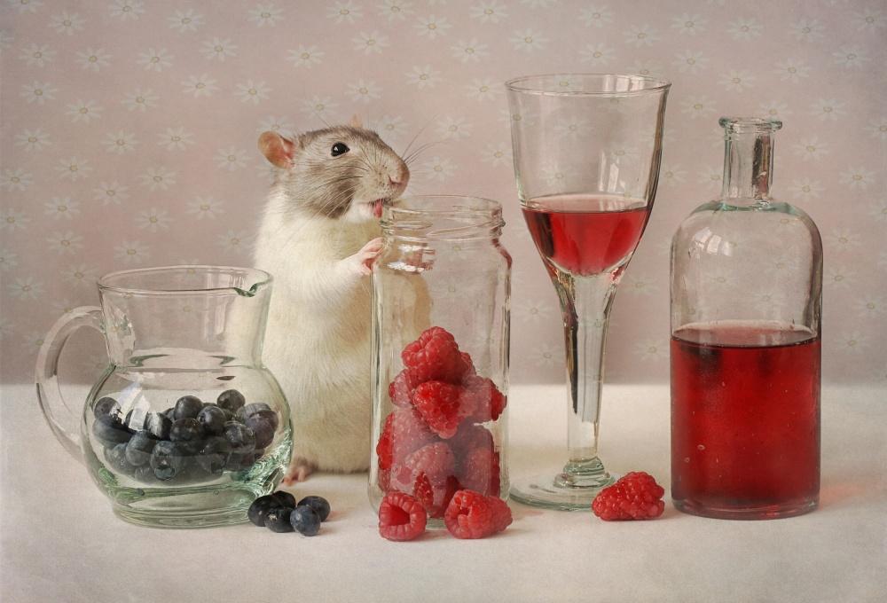A piece of fine art art photography titled Snoozy With Fruit by Ellen van Deelen
