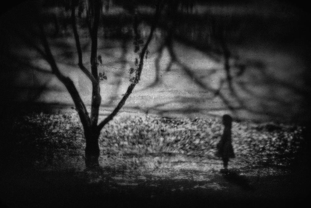 A piece of fine art art photography titled Let's Talk by Teruhiko Tsuchida