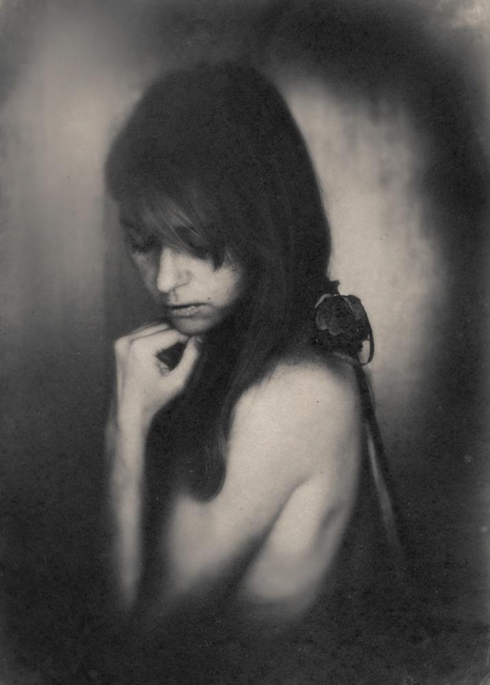 A piece of fine art art photography titled Rose by Edyta Pekala