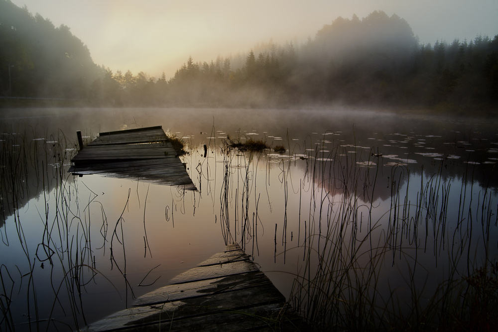 A piece of fine art art photography titled In the Misty Morning by Willy Marthinussen
