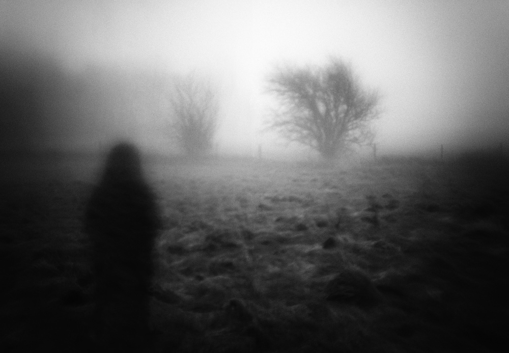 A piece of fine art art photography titled Misty Heathland by Marianne Siff Kusk