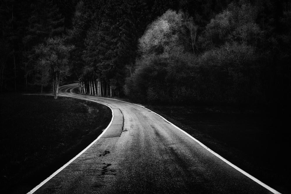 Bavarian Paths