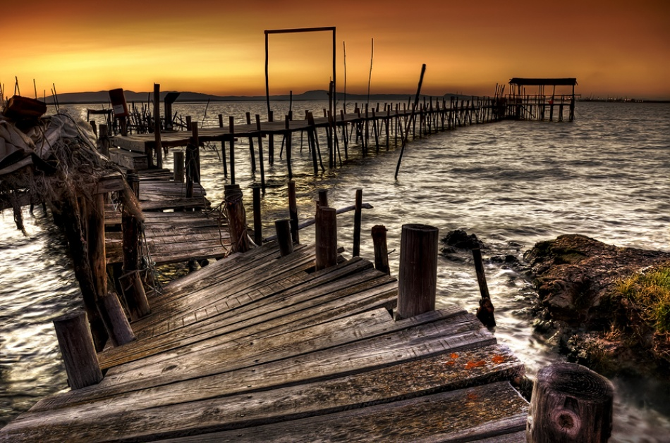 A piece of fine art art photography titled Carrasqueira by Paulo Gomes