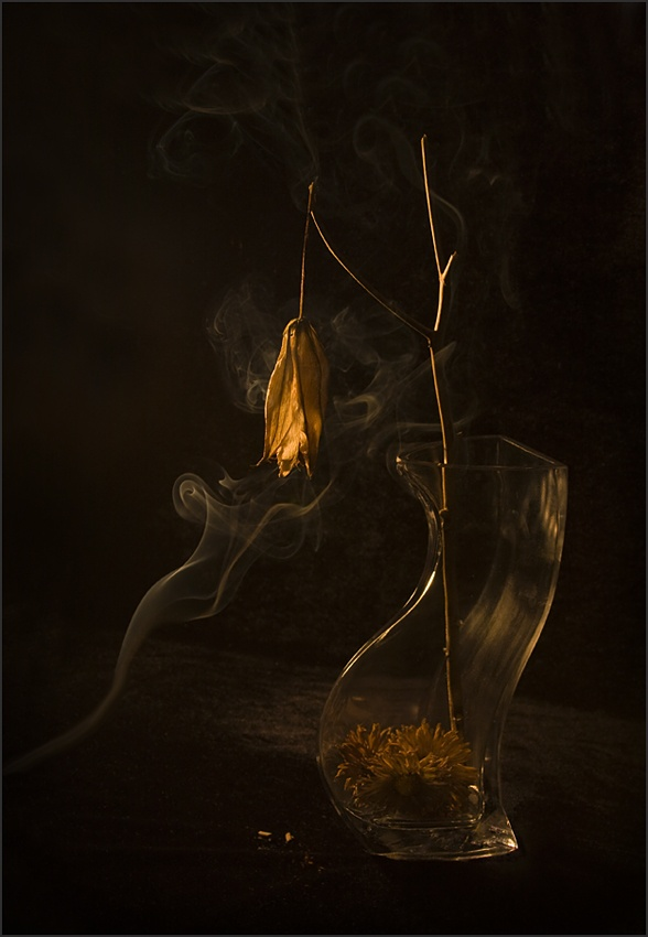 A piece of fine art art photography titled Untitled by Ileana Bosogea-Tudor