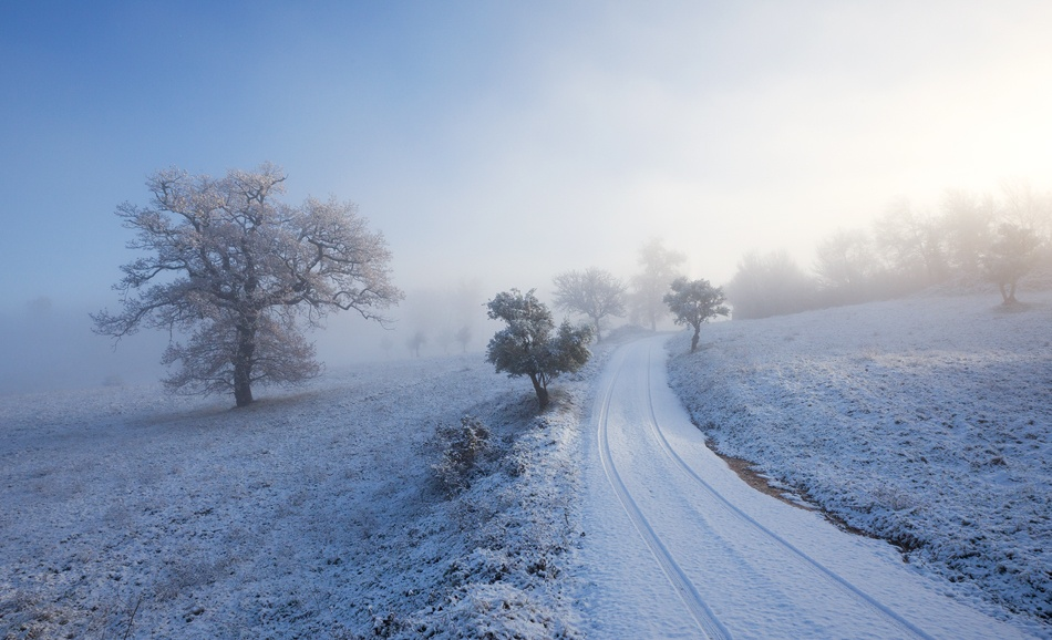 A piece of fine art art photography titled A Cold Morning In Early Winter by Stefano Ciocchetti