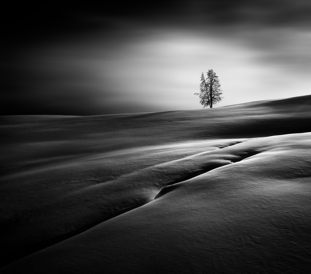 A piece of fine art art photography titled Solitude #2 by Huibo Hou