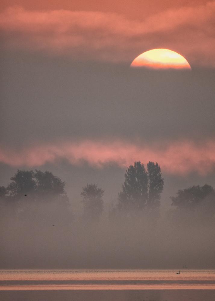 A piece of fine art art photography titled Sun III by Heinz Hieke