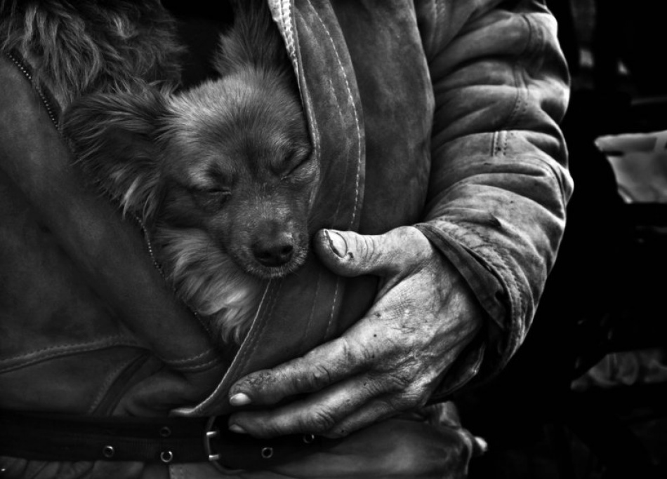 A piece of fine art art photography titled The Man and His Friend by Elisabetta Ronchi