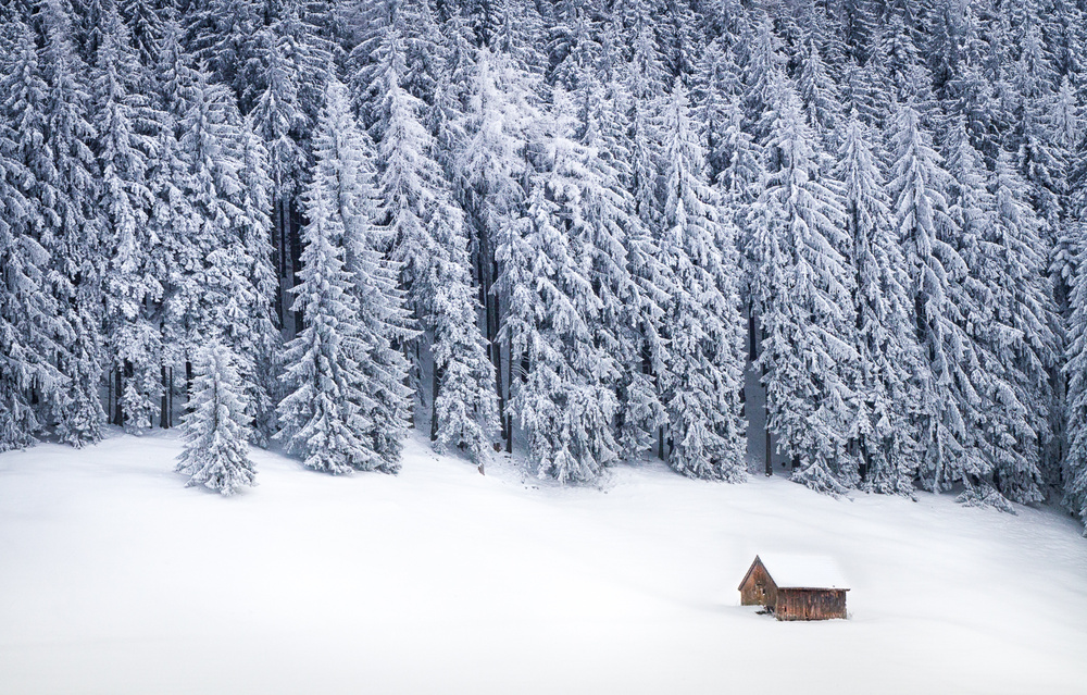 A piece of fine art art photography titled Warm In the Cold by Christoph Blank