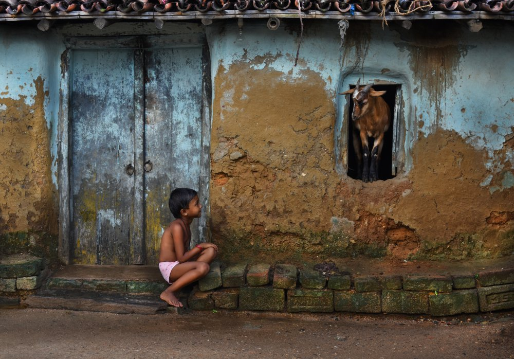 A piece of fine art art photography titled Child & Goat by Sudipta Chatterjee