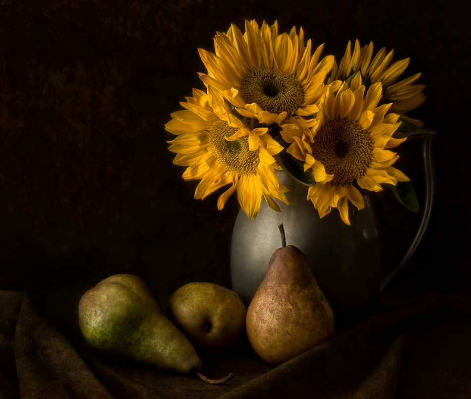 A piece of fine art art photography titled Sunny Days by Amy Weiss