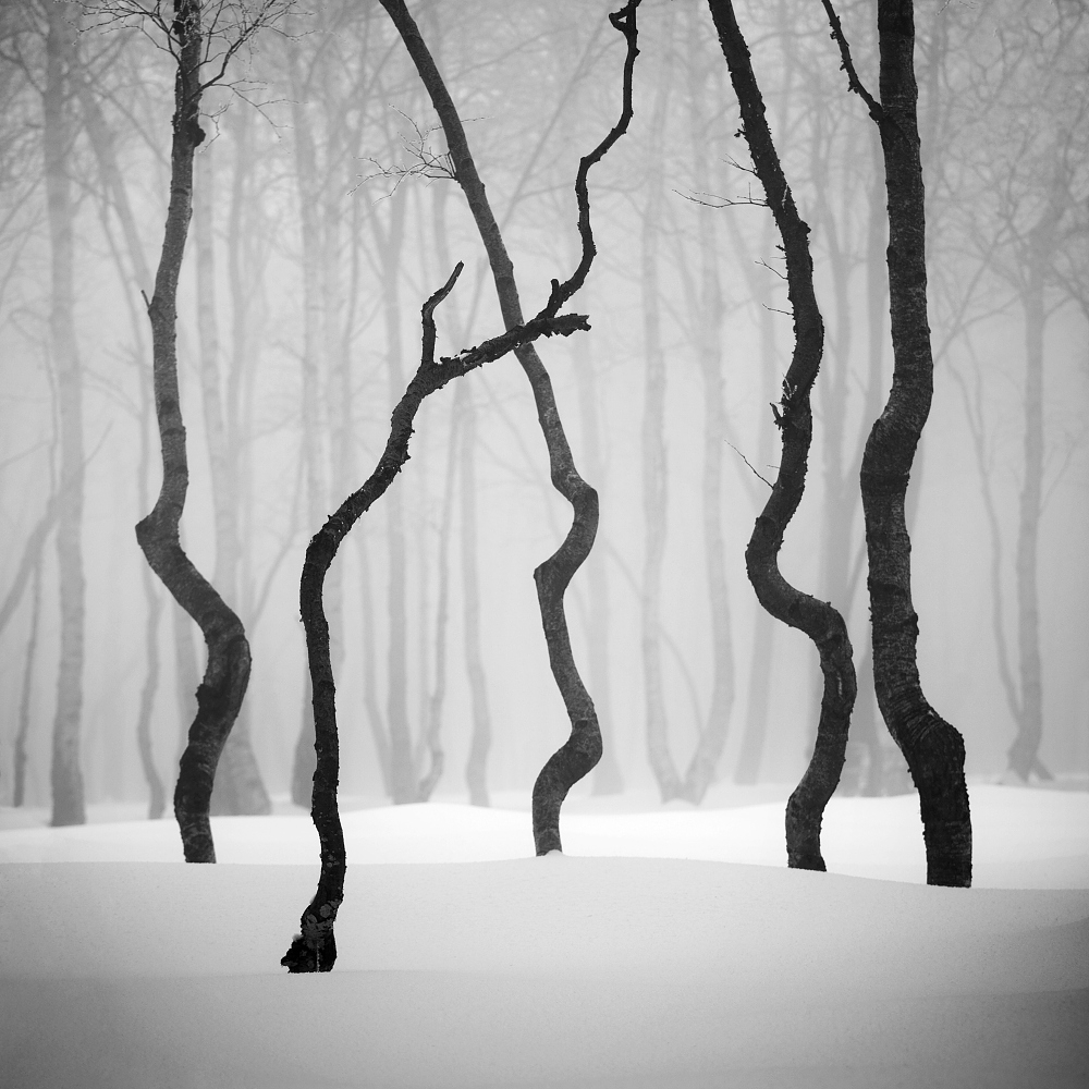 Winter in the Ore mountains