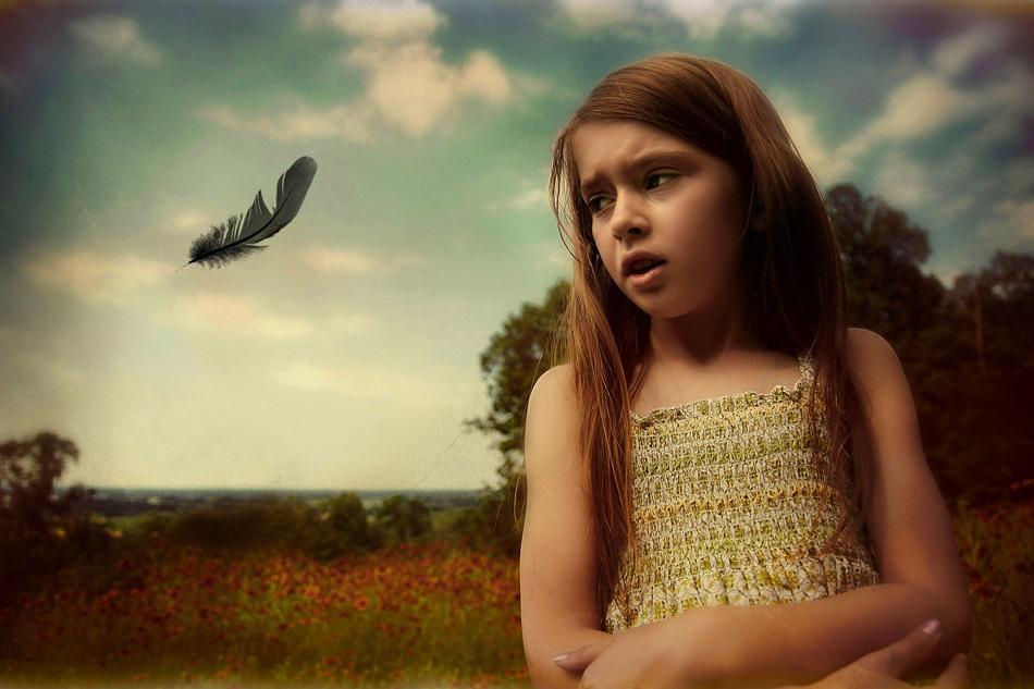A piece of fine art art photography titled Bye-Bye Birdie by Amanda Chapman
