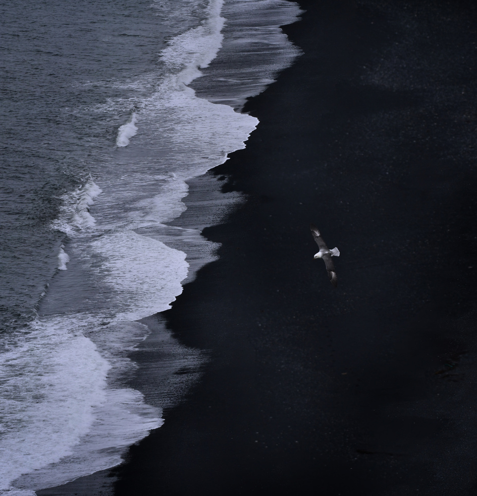 View this piece of fine art photography titled Black Sand Beach by Anura Fernando
