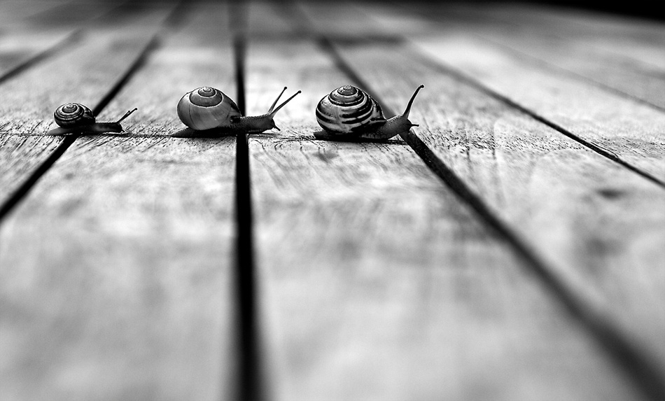 A piece of fine art art photography titled Crossing Lines by ronald koster