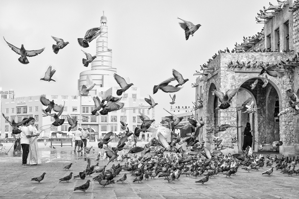 A piece of fine art art photography titled Pigeons by Tijanaa