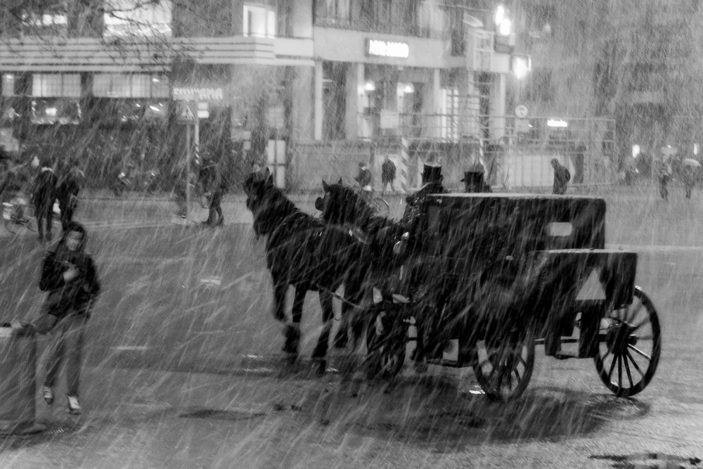 Carriage in winter storm