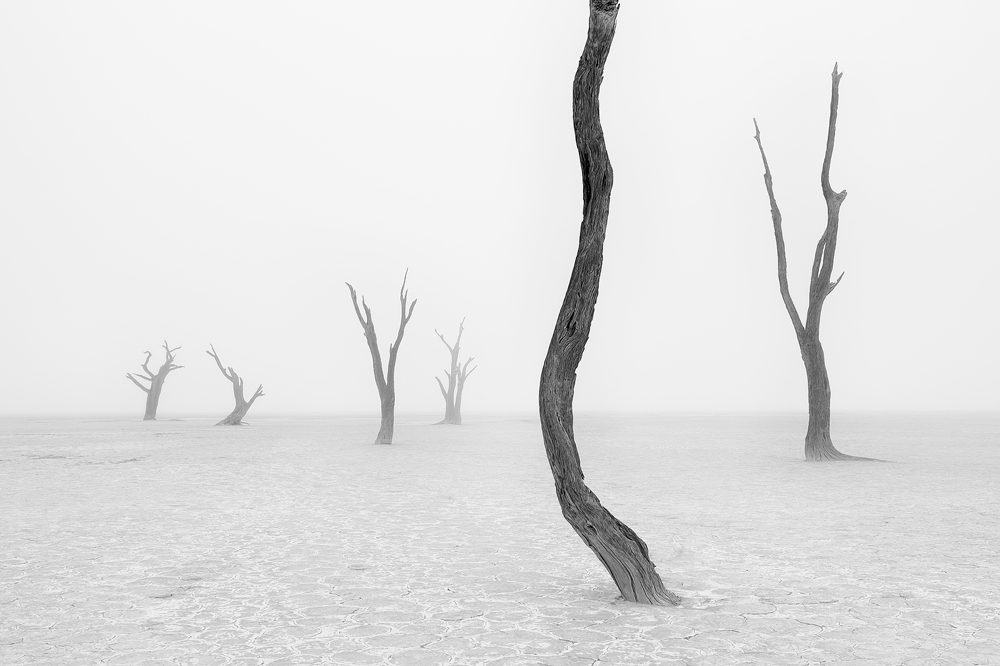 A piece of fine art art photography titled Beyond the Veil of Death III by Marsel van Oosten