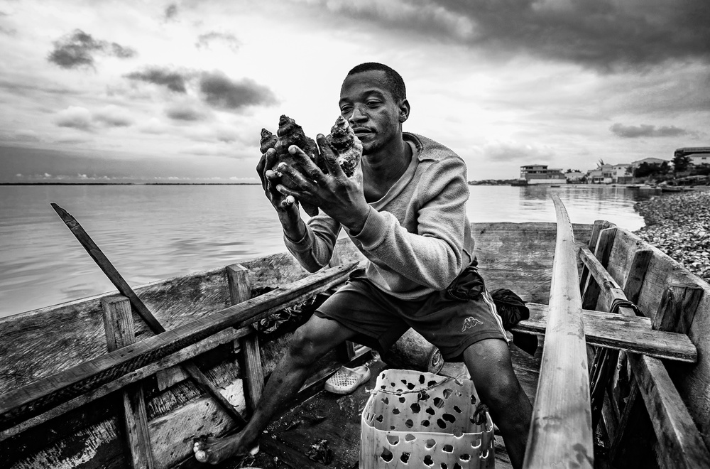 The conchs fisherman