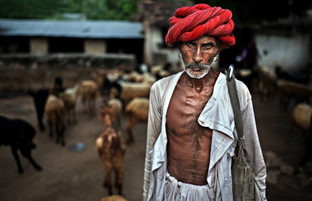 A piece of fine art art photography titled Shepherd by Alessandro Bergamini