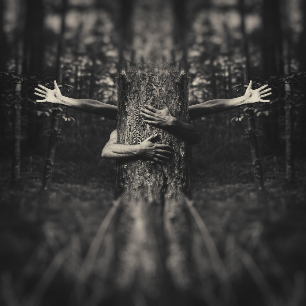 A piece of fine art art photography titled Do Not Break My Tree by amir bajrich