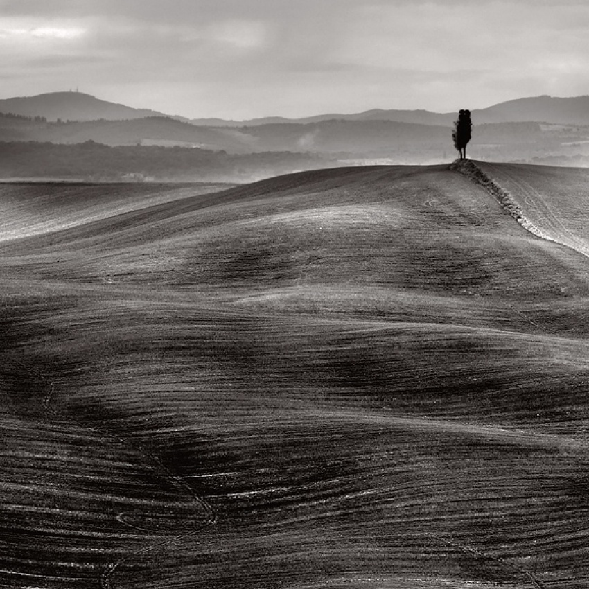 A piece of fine art art photography titled Tuscany Dunes by Stefano Orazzini