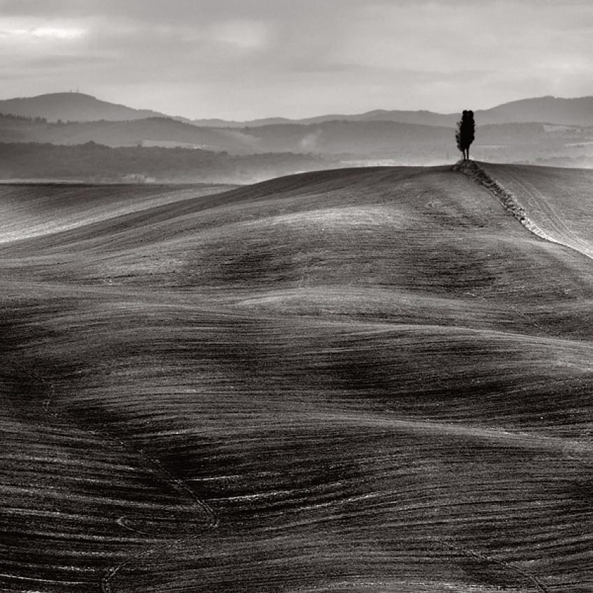 Tuscany Dunes