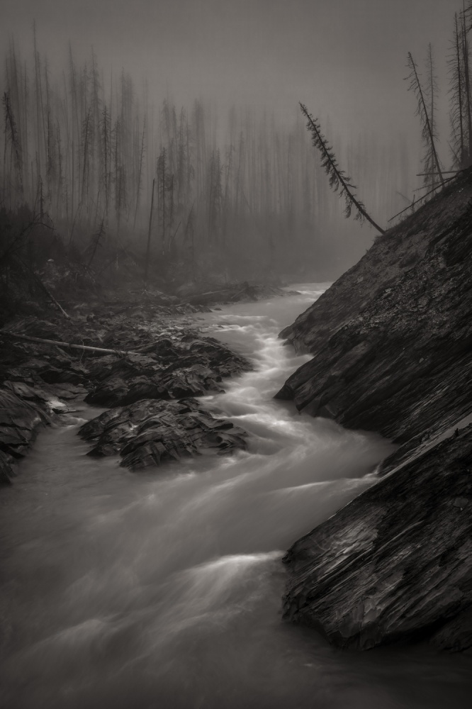 A piece of fine art art photography titled Misty Morning by Keith Andrews