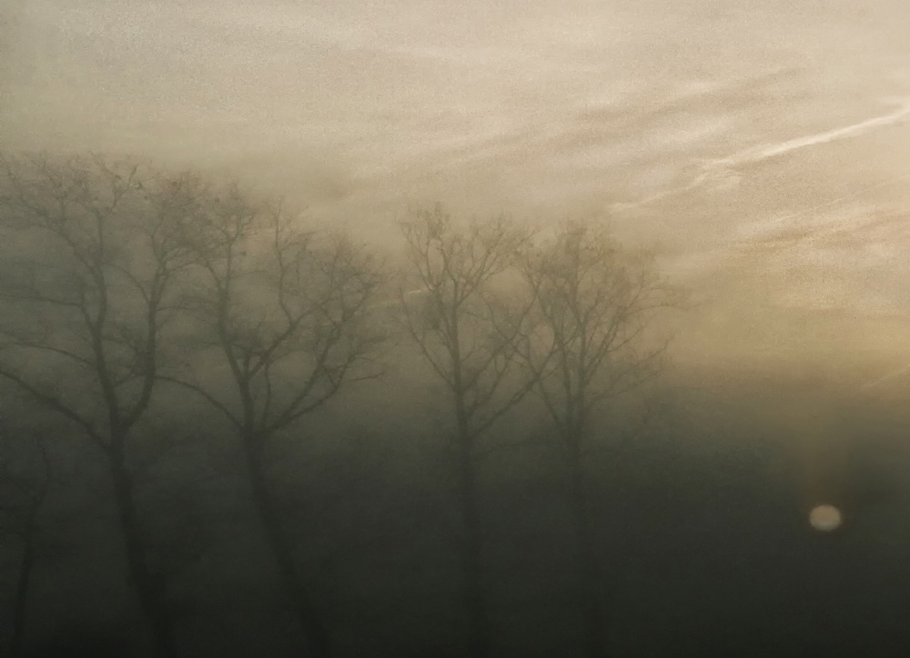 A piece of fine art art photography titled Autumn's Poet Song  by Yvette Depaepe