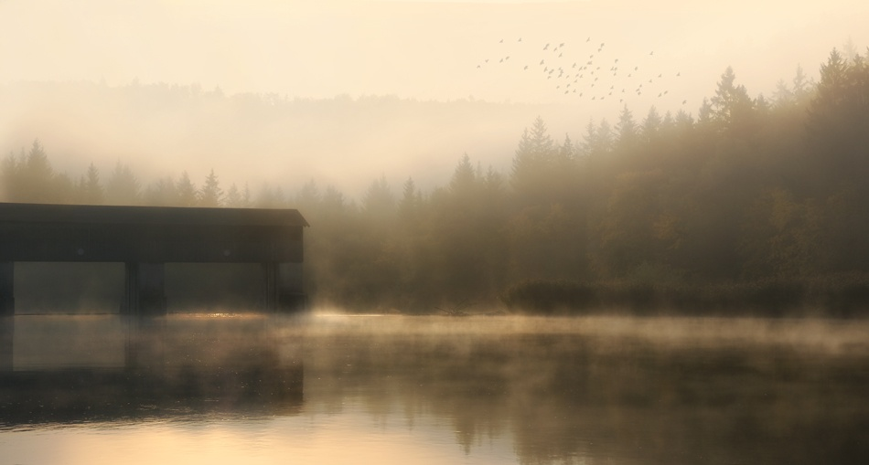 A piece of fine art art photography titled October by Norbert Maier