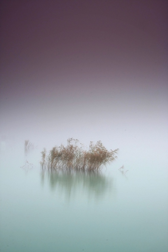 A piece of fine art art photography titled Minimal by Szabó Balázs