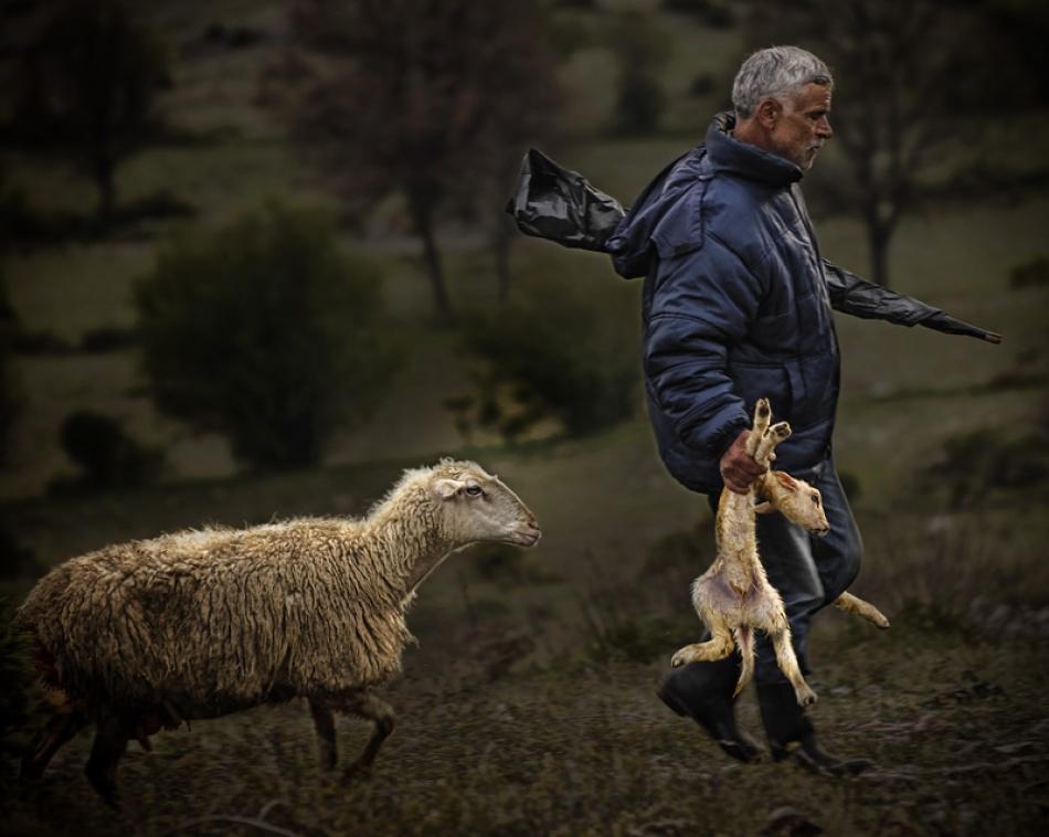 A piece of fine art art photography titled Newborn by Yannis Charatsidis